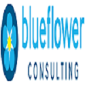 blueflower-consulting-40294839-fe.png