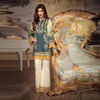 Pakistani Dress C391C.jpg